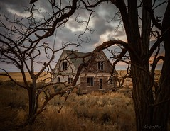 The World Has Turned And Left Me Here (Chris Lakoduk) Tags: abandoned homestead home house trees spooky landscape photography derelict four gables windows land scenery sky sunrise morning clouds left behind nikon weathered rustic old