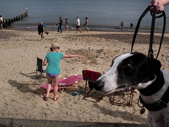 Southwold, England, 2016 (Alberto Pérez Puyal) Tags: 2016 alberto beach color dog england europe greatbritain hand hat perez pier puyal sand sea southwold streetphotography sunny tourism tourist village woman