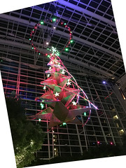 IMG_1382 (TruffShuff) Tags: 2016 gaylordhotel ice md maryland nationalharbor oxonhill december2016