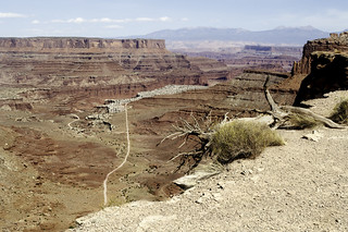 View of the Shafer trail at Canyonlands #3