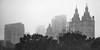 Central Park West in fog (dansshots) Tags: centralpark centralparknyc centralparkwest cpw dansshots nikon nikond750 fog mist drizzle nyc newyorkcity upperwestside iloveny bnw blackandwhite blackandwhitephotography blackandwhitenewyorkcity blackandwhitephoto