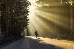 Moments that will last forever (der_peste) Tags: sunrays sunbeams crepuscularrays road forest person sunrise winter fall autumn sunlight light nature sonya7ii sel35f14z zeiss 35mm