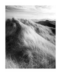 The Dune Road (vuzephotography.co.uk) Tags: anglesey ir infrared wales