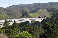 bridges and tunnels (ezeiza) Tags: california ca pacifica devilsslidecoastaltrail devilsslide devils slide coastal trail sanmateocountyparks sanmateocounty san mateo county parks hiking coast plant vegetation highway1 highway
