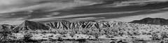 DSCF0821 (rjosef) Tags: borrego desert