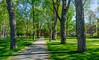 Le campus du Bowdoin College (Plus Beau Plus Loin) Tags: usa etatsunis maine brunswick campus university college université bowdoin architecture