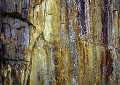Slate Wall Details (CactusD) Tags: tilberthwaite england cumbria slate movements swing slatequarry lakedistrict rock lichens greatbritain great britain nikon d800e fx texture uk unitedkingdom gb landscape film 5x4 4x5 details fuji fujichrome velvia velvia50 largeformat large format digitized linhof technikardan tks45 s45 schneideraposymmarmc150mmf56 150mm f56 tilt shift tiltshift pce 85mmf28pce 85pce 85mm f28