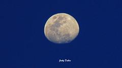 19.22 (Jinky Dabon) Tags: canonpowershotsx170is moon lunar luna earth'snaturalsatellite sky astronomy moon'sshape lunarcycle moonlight