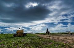 "A Ride (Well-Bred Kannan (WBK Photography)) Tags: wbkphotography wbk ""wellbred"" kannanmuthuraman kannan nikon nikond750 d750 india indian weekendwalk incredibleindia travelphotography travel traveler msb madrasshutterbugs tamronsp1530mmf28divcusd marina monsoon clouds sky beach chennai sunrise horse"