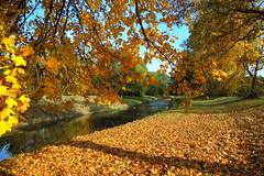 Autumn (ZdenHer) Tags: autumn podzim tree river lake