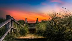 Blankenberge Fence - 4086 (ΨᗩSᗰIᘉᗴ HᗴᘉS +19 000 000 thx) Tags: fence hff photoshop edited hdr 3exp blankenberge flandres belgium belgique duin dune hensyasmine yasminehens