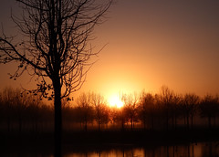 Zonsopkomst 17112017 (megegj)) Tags: gert weer weather sunrise zonsopkomst
