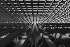 Roof inside of the Liège-Guillemins Railway Station in Belgium. (Clicks by Mike) Tags: travel tokina 1628mm d610 fx nikon unique art roof architecture station railway liège belgium blackandwhite bnw