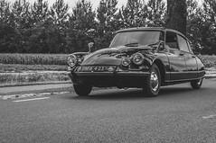Citroën ID19 (Roberto Braam) Tags: dm6423 citroën id id19 french car voiture vehicle classic oldtimer european automobile goddess vehikel street road outdoor old snoek blackwhite scenery europe monochrome vintage retro landscape
