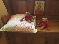 #FlickrFriday #Opposites (Martellotower) Tags: flickrfriday opposites hard soft monkey monkeys cushion settle wood