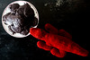 Krockolator Allidile (xockisfriends) Tags: krocki krockolatorallidile red alligator crocodile dangerous balladsinger cute mostdangerous mostred animal schneckennudel chocolat schokolade gingerbread