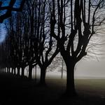 Foggy Autumn atmosphere on the Italian Lago Maggiore thumbnail