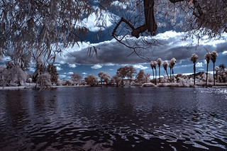 Santee Lakes With Trees And Clouds