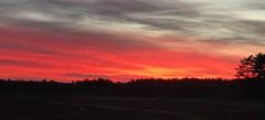 November skies at dusk (saudades1000) Tags: redskies peace twilight nature novemberskies skies sunset dusk