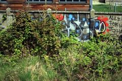 Rema - Lewisham (GRAFFLIX (grafflix.co.uk)) Tags: graff graffiti rema nbd ab b6k