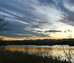 After the Sun Set (Sandra Leidholdt) Tags: lakewood colorado usa sandraleidholdt landscape clouds sky sunset lake belmar geese water frontrange kountzelake