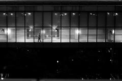 Behind windows (pascalcolin1) Tags: paris13 bnf homme man nuit night fenetres windows lumières lights photoderue streetview urbanarte noiretblanc blackandwhite photopascalcolin 50mm canon50mm canon