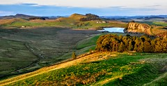 HADRIAN'S WALL (pajacksonartist) Tags: hadrians wall hadrian emperor roman rome historic landscape english heritage empire ditch fields grass trees cliff cliffs frontier northumbria northumberland