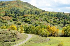 Taking the Low Road (Patricia Henschen) Tags: oak gambels fall fallcolor autumn leafpeeping aspen mountains mountain newmexico chama clouds us84 rural highcountry colorado pagosasprings pathscaminhos sanjuanmountains sanjuan backroads
