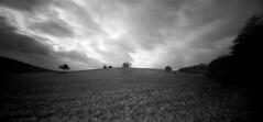 ONDU Pinhole 6x12 @ Odenwald (rallodi) Tags: ondu pinhole 6x12