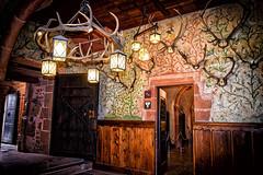 Trophées de chasse (thierrybalint) Tags: trophées lustre chasse château hautkoenigsbourg