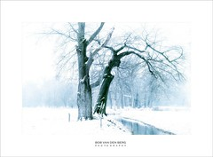 old and wise (Zino2009 (bob van den berg)) Tags: snow white enchanted wintertime hohoho trees bare trunk old oak water well standing stories wise fog mistig nebel bäume zwei two together freezing landscape winterscape silhouette fence silence alone holland delden grey zino2009