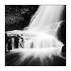 At the Bottom - Ultra 100 exp* (magnus.joensson) Tags: sweden swedish forest waterfall skåne sträntemölla blackandwhite monochrome 6x6 ultra 100 rolleiflex f35 medium format selfdevelop stand 1100 1h epson v800 scan polarizer
