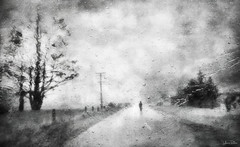 if they only knew . . . (YvonneRaulston) Tags: surreal new zealand nz south island rain raindrops wet cold shower water atmospheric art abstract blackandwhite bw creativeartphotography dream emotive texture fineartgrunge fog soft fence lamp post road person icm mist moody moments monochrome morning netartii sony photoshopartistry street tree sky sundaylights