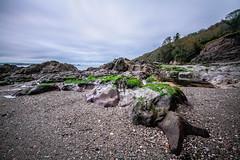 Down on the beach (NikNak Allen) Tags: cornwall cawsands cawsandsbay bay coast sand stones rocks seaweed low early morning sea water ocean sky clouds longexposure trees