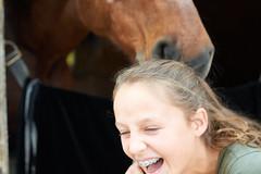 Horse Humor