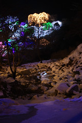 The Garden of Morning Calm (H.E.A.R.T. Productions) Tags: public complete gapyeonggun gyeonggido southkorea kr