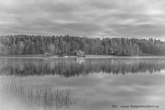 20171103003120 (koppomcolors) Tags: koppomcolors österwallskog värmland varmland sweden sverige scandinavia