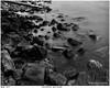 Drifwood and Rocks (wynb1) Tags: wynb wynbunston bwwynbunston blackwhitephotos blackandwhite blackandwhitephotos bwwater bwriver sea seablackandwhite ocean bwocean rocks bwrocks