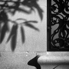 Contrasts (tim.perdue) Tags: contrasts shadow light stone wall window iron scrollwork leaves columbus museum art cma derby court ohio mycma iphone se mobile instagram black white bw monochrome monovember 2017 monovember2017