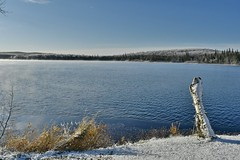 Cold morning out on the lake (_talon263_) Tags: ontario canada katrine november outdoor water lake scenery