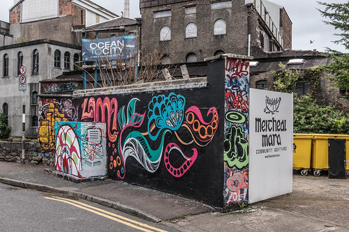 EXAMPLES OF STREET ART IN CORK CITY [PHOTOGRAPHED 2017]-133918