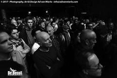 2017 Bosuil-Het publiek tijdens het optreden van Popa Chubby 8-ZW
