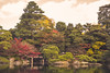 Kyoto (mripp) Tags: art vintage retro old autumn herbst colors nature natur japan kyoto landscape landschaft garden leica m10 summicron 50mm green asia