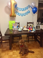 Ruby Red's boy Tucker at his 1st birthday!