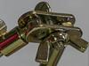 Assembly (JZ_Photography) Tags: g85 macro panasonic lumix helicon
