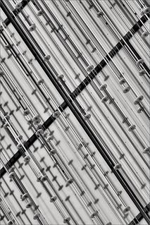 Bio City Abstract