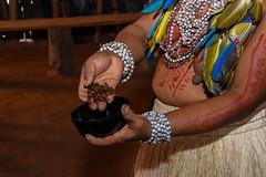 Convidados para FIGA em tour Amazônico