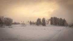 20171129001152 (koppomcolors) Tags: koppomcolors winter vinter värmland varmland sweden sverige scandinavia
