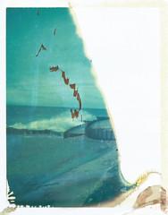 "Blustery Mistake (dreamscapesxx) Tags: ""snapitseeit"" polavoid michigan ""lakemichigan"" ""pointbetsie"" lakeshore ""beautifulmistake"" polaroid peelapart packfilm expiredfilm keystone60secondeverflash polaroid669film blustery seaspray coldandwindy"