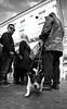 Beware of the dog... (Michael Kalognomos) Tags: dog ef1635f4lisusm canoneos5dmarkiii jackrussellterrier streetphotography blackwhite monochrome athens greece ermoustreet people bite guardian chain